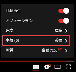 Youtube字幕 設定項目2